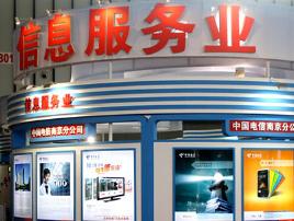 杭州市信息服务业发展专项资金管理办法(试行)